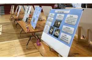 2019 Elwood Science Fair