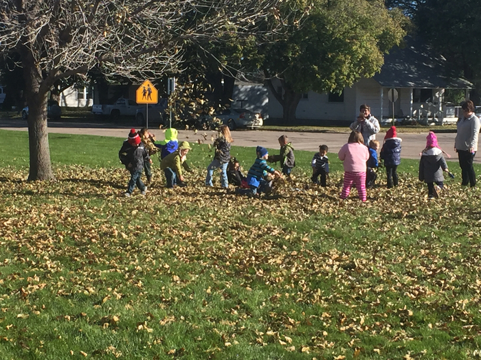 PreK throwing leaves on the front lawn at school