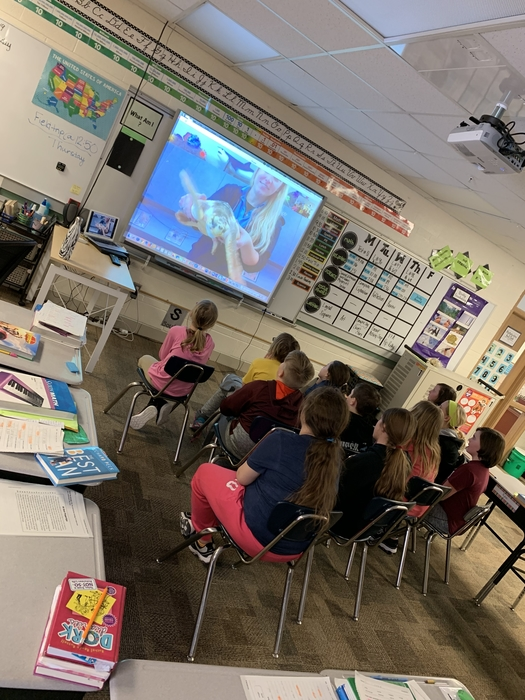 Today the Elwood 4th Grade class got the opportunity of doing a live Skype with the North Carolina Aquarium with a Pine Knoll Shores Outreach team member. The students got a close look at a Loggerhead Sea Turtle and learned so many fun facts! 🐢