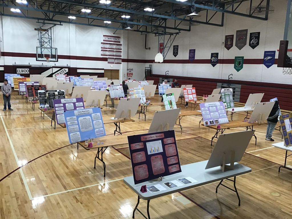 Projects at the 2020 science fair